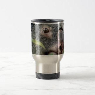 koala bear looking right close up eye c jpg mugs