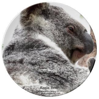 Koala Bear Plate