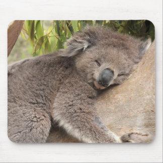 Koala Bear Sleeping Mouse Pad