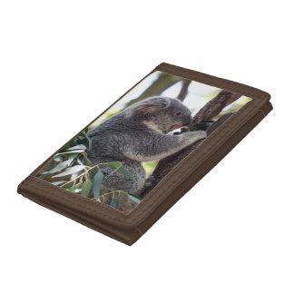 Koala Bear Trifold Nylon Wallet