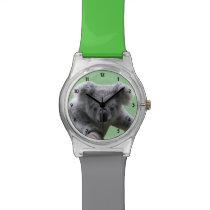 Koala Bear Watch