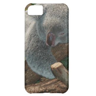 Koala Bears Aussi Outback Destiny Nature Case For iPhone 5C