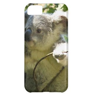 Koala Bears Aussi Outback Destiny Nature iPhone 5C Case