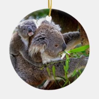 Koala Bears Aussi Outback Destiny Nature Christmas Tree Ornaments