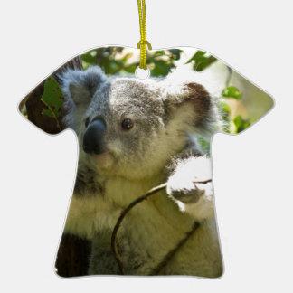 Koala Bears Aussi Outback Destiny Nature Christmas Tree Ornament