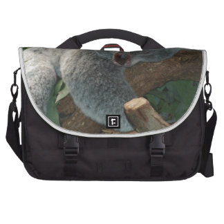 Koala Bears Love Animals Destiny Gifts Laptop Computer Bag