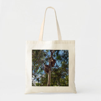 Koala_Bears,_Wild_Trees,_Budget_Tote_Shopping_Bag Tote Bag