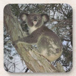Koala Beverage Coaster