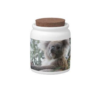 Koala Candy Jar