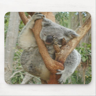 Koala cansada alfombrillas de ratones