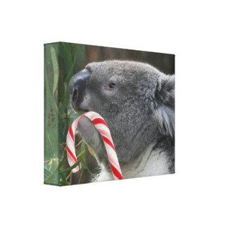 Koala Christmas Candy Cane Stretched Canvas Prints