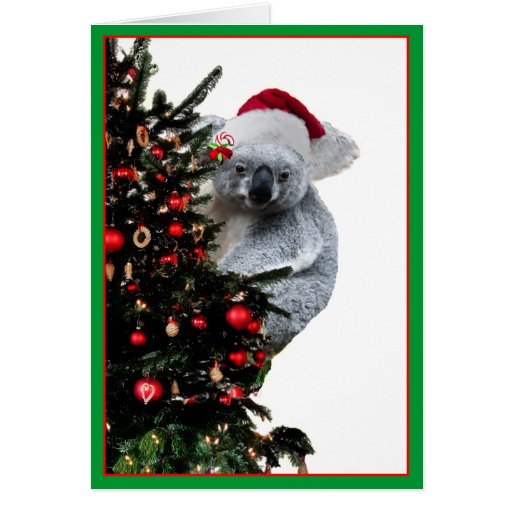 Koala Christmas Stationery Note Card