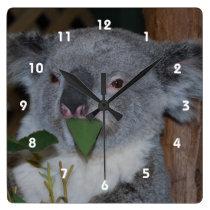 Koala Clock