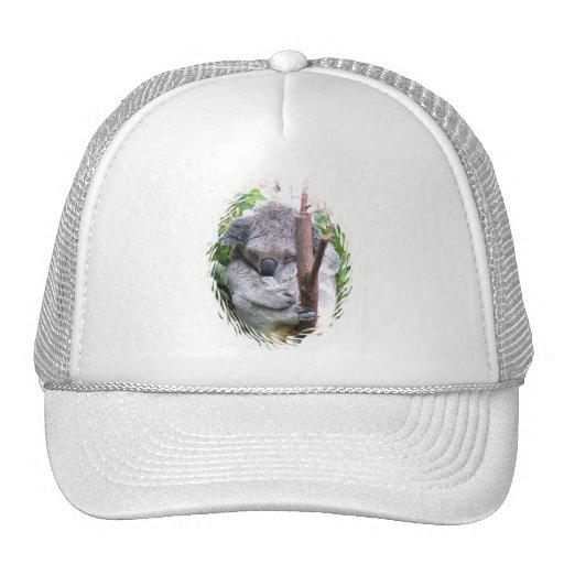 Koala Cuddle Baseball Cap Trucker Hat