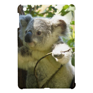 Koala cutie iPad mini cover