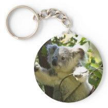 Koala cutie keychain