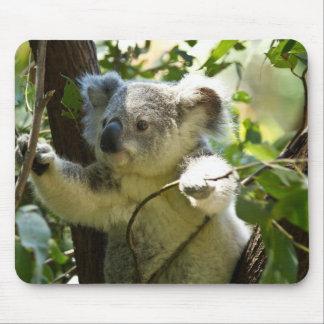 Koala cutie mouse pad
