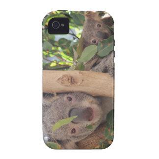 Koala de la madre y del bebé iPhone 4/4S funda