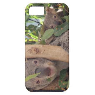 Koala de la madre y del bebé iPhone 5 carcasas