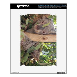 Koala de la madre y del bebé NOOK calcomanía