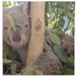 Koala de la madre y del bebé servilletas de papel