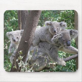 Koala de Mousepad y foto Australia de dos bebés Alfombrillas De Ratón