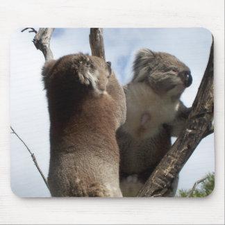 Koala Duo Mouse Pad