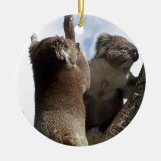 Koala Duo Christmas Tree Ornament
