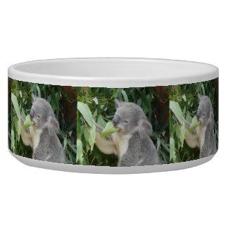 Koala Eating Gum Leaf Bowl