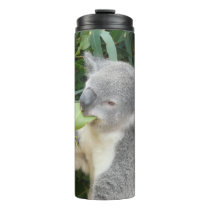 Koala Eating Gum Leaf Thermal Tumbler