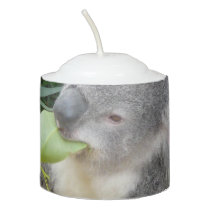 Koala Eating Gum Leaf Votive Candle