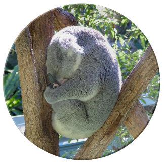 Koala el dormir platos de cerámica