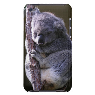 Koala en el caso de iTouch del árbol Barely There iPod Cárcasa