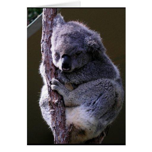Koala en tarjeta de felicitación del árbol