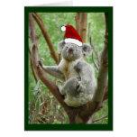 Koala en tarjeta de Navidad de la foto del gorra d