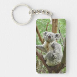 Koala en un árbol llaveros