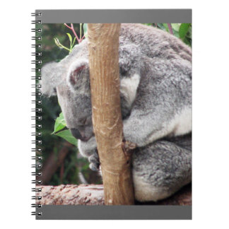 Koala encantadora única Bea el dormir Libretas Espirales