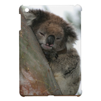 Koala - Energy Conservationist Extraordinaire! Cover For The iPad Mini