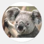 Koala Etiquetas Redondas