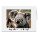 ¡Koala, ey apuesta! Felicitación