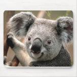 Koala Fever Mouse Pad