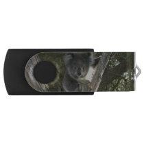 Koala Flash Drive