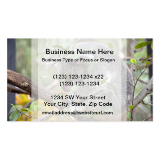 koala head down sleeping c business cards
