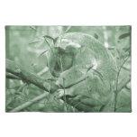 koala head down sleeping green c placemats