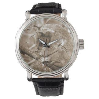 koala head down sleeping sepia c wrist watch