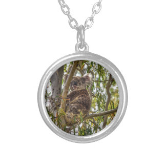 KOALA IN A TREE RURAL QUEENSLAND AUSTRALIA ROUND PENDANT NECKLACE