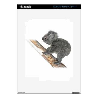 Koala In Profile Climbing iPad 3 Skin