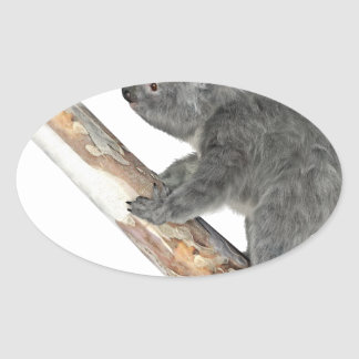 Koala In Profile Climbing Oval Sticker