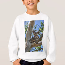 KOALA IN TREE AUSTRALIA ART EFFECTS SWEATSHIRT