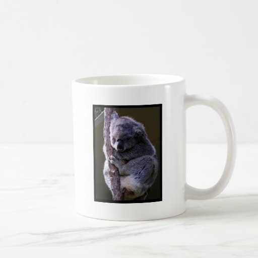 Koala in Tree Coffee Mug